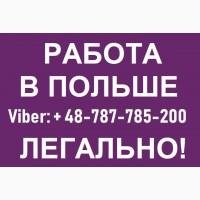 Електрик. Робота Електриком в ПОЛЬЩІ до 4500 зл. Безкоштовні вакансії в Польщі