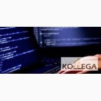 Требуются программисты, Польша