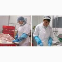 Робота в Чехії для жінок і чоловіків! Упаковка філе риби і курки