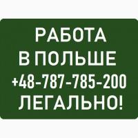 Помощник ЭЛЕКТРИКА  Легальная Работа в Польше Варшава