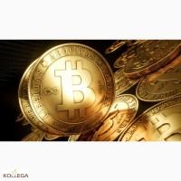 Что нужно, чтобы начать добычу криптовалюты