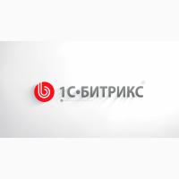 Разработка, поддержание, администрирование сайта и портала Битрикс24