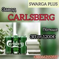 Carlscberg пивной склад. Работа в Польше