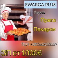 Пекарня. Работа в Чехии
