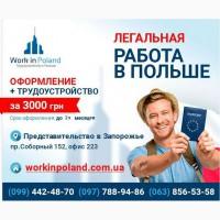 Легальное трудоустройство за границей