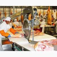 Работа в Польше на мясокомбинате разнорабочим с опытом работы