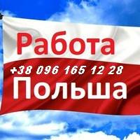 Работа в Польше. Повар в Польше. Кондитер в Польше