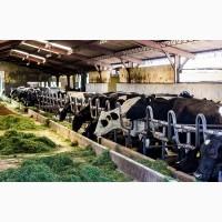 Рабочий на ферму в Литву